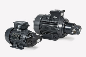 67/5000 Quiet and insensitive gerotor feed pump with high efficiency
